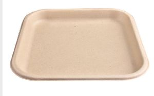 11 Inch Biodegradables Disposable Plate