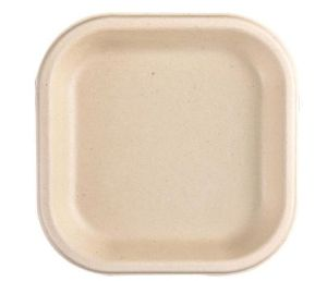 7 Inch Biodegradables Disposable Plate