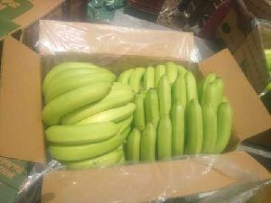 G9 Cavendish Banana