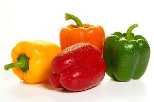 Fresh Coloured Capsicum