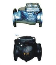 Non Return Valve