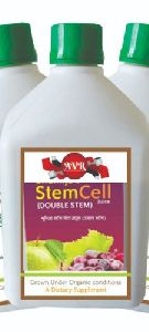 Stem Cell Juice
