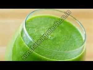 Natural Giloy Juice