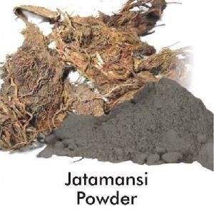 Jatamansi Powder