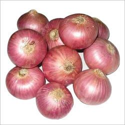 30-50 MM Fresh Red Onion