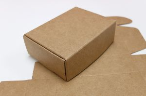 Brown Paper Box