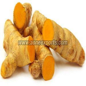 Fresh Whole Turmeric