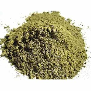 Gorakhmundi Powder