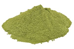 Ziziphus Spina Leaf Powder