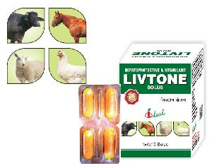 Livtone Bolus