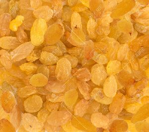 Dry Golden Raisins