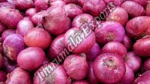 Fresh Natural Onion