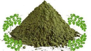 Drumstick Leaf Powder