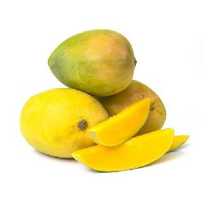 Fresh Banganapalli Mango