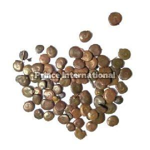 Acacia Catechu Herbal Seeds