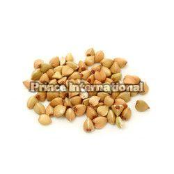 Egoma Herbal Seeds