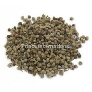 Nirgundi Herbal Seeds