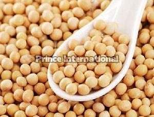 Soybean Oil Seeds