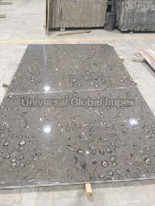 Fossil Grey Marble Slab
