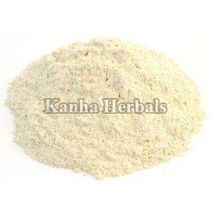 Shatavari White Powder