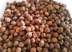 Organic Black Chickpeas