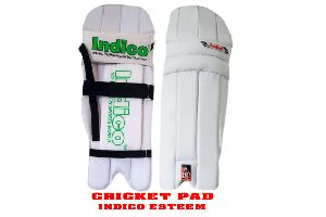 Esteem Cricket Pad