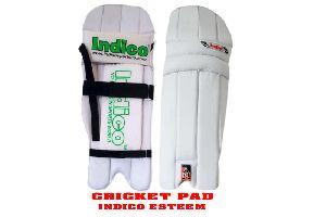 Esteem Cricket Pad