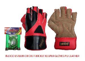 Esteem Cricket Wicket Keeper Gloves
