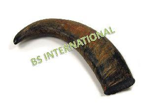 buffalo horn tip
