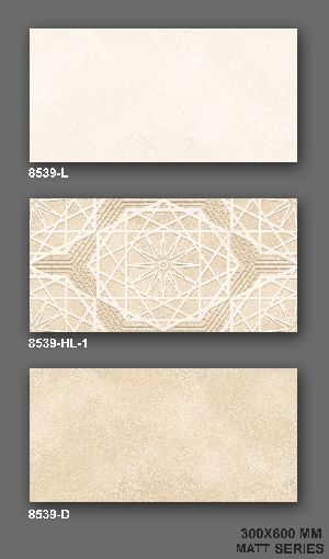 8539 Matt Finish Wall Tile