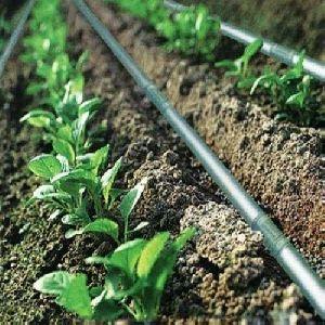 Drip Irrigation Service