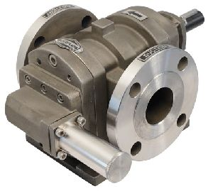 FTMS SS Rotary Twin Gear Pump