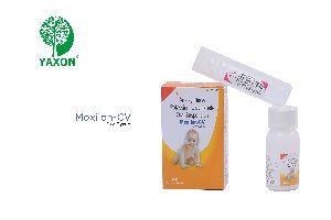 Moxiion CV Dry Syrup