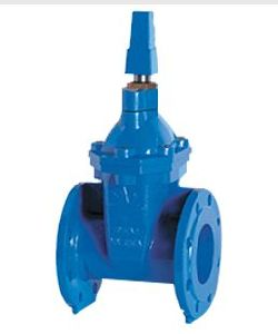 Sluice Valve With Cap