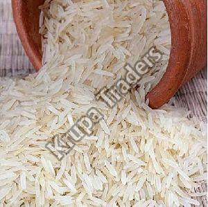 Gujarat 17 Rice