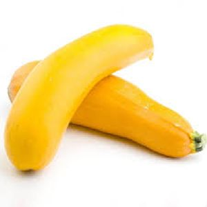 Fresh Yellow Zucchini