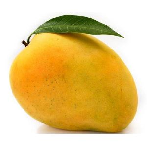 Fresh Natural Mango