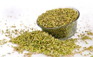 Green Split Coriander Seeds