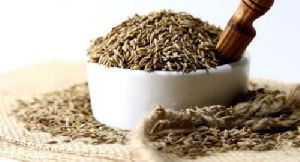 Raw Cumin Seeds