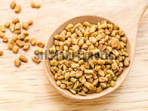 Bold Fenugreek Seeds