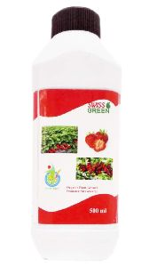 Organic Growth Promoter for Strawberry Plants