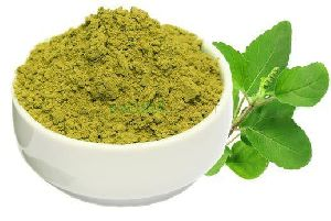 Basil Leaf Powder