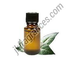 Herbal Amla Fragrance