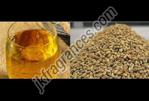 Natural Ajwain Oil