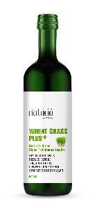 Wheat Grass Plus