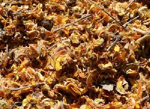 Dried Tesu Flower