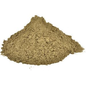 Tulsi Leaf Powder