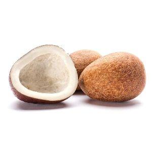 Dried Copra Coconut