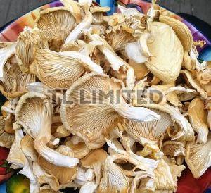 Natural Dry Oyster Mushroom