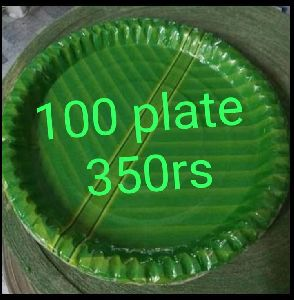 12 Inch Green Paper Plates